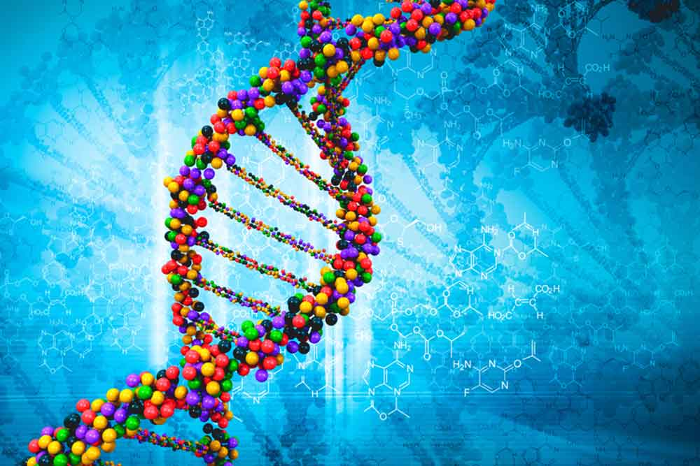 Feature image for Academic provider decision for MSc in Genomic Science