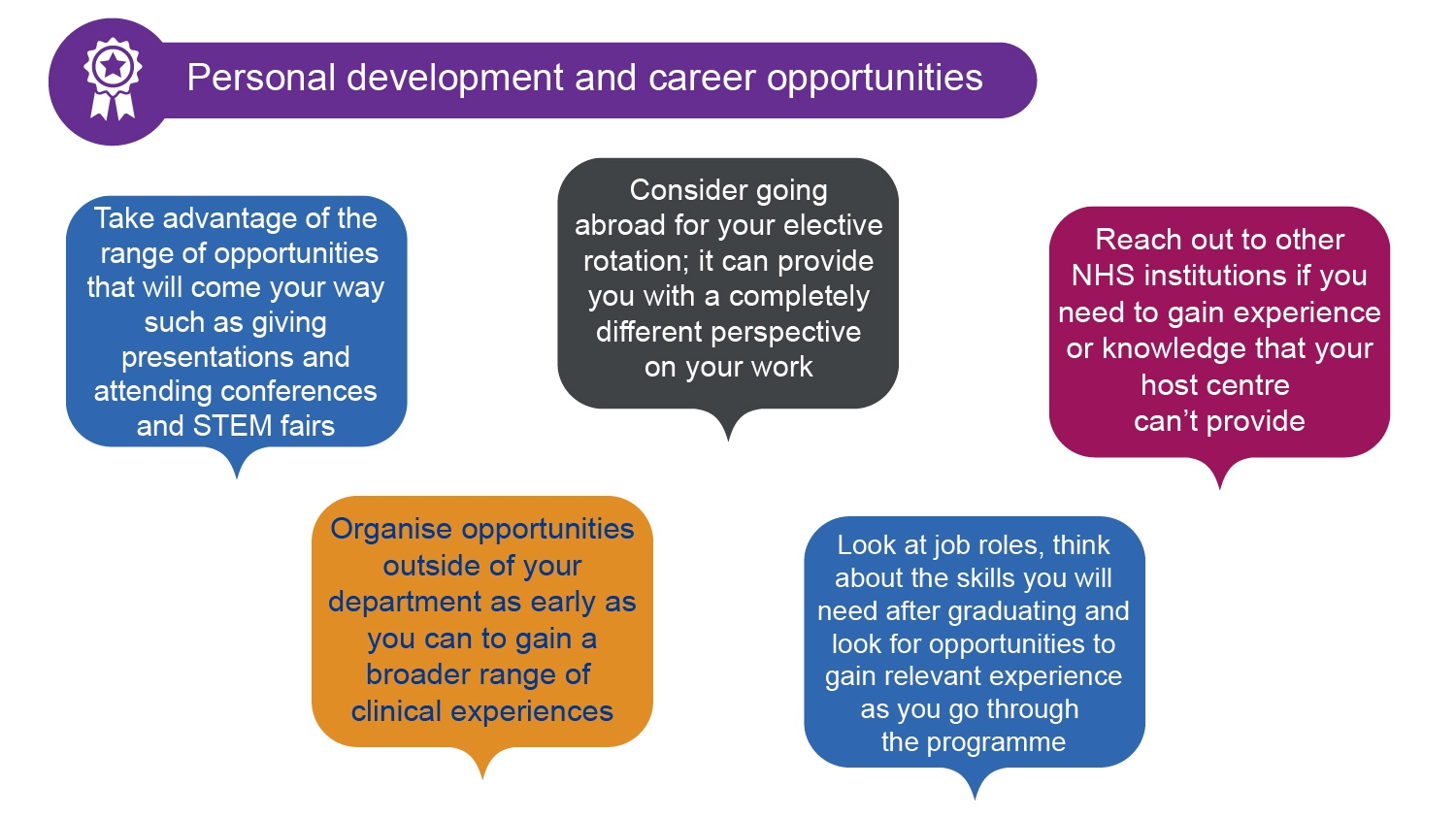 Graphic showing quotes from STP trainees about personal development and career opportunities