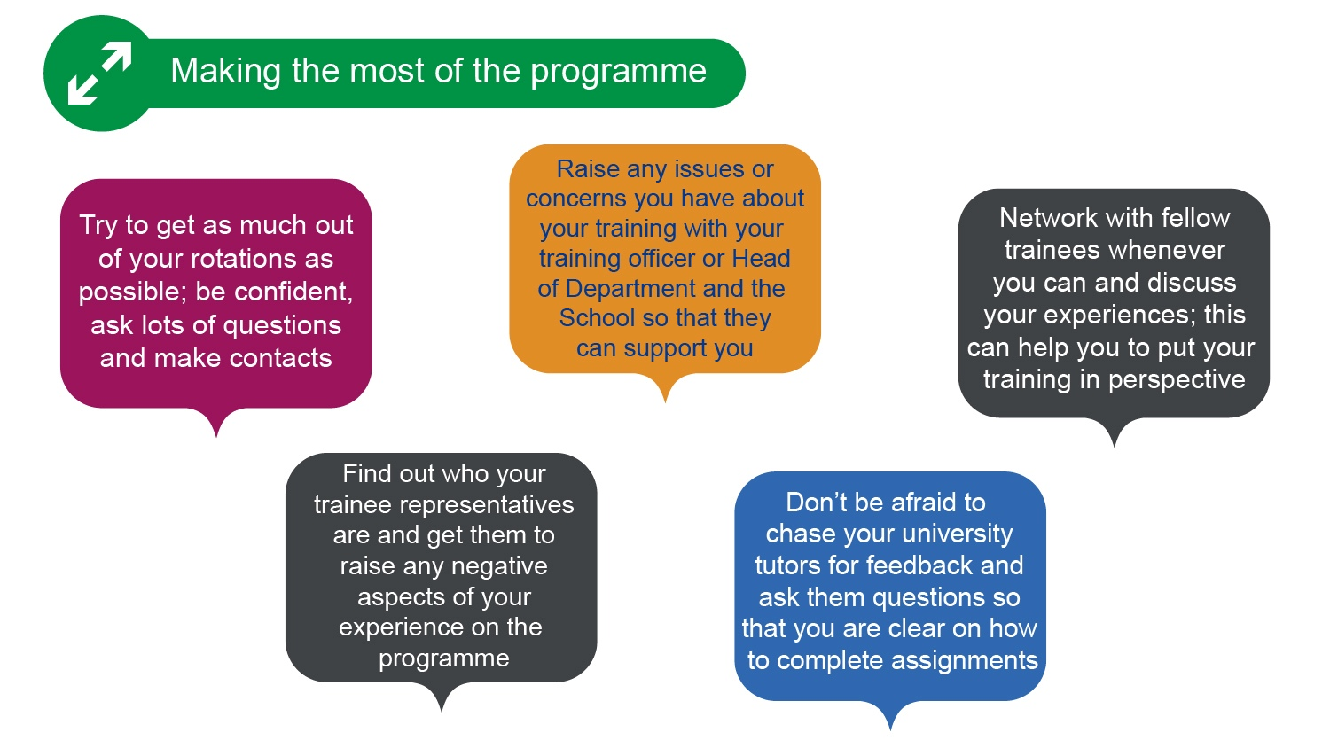 Graphic showing quotes from STP trainees about making the most of the programme
