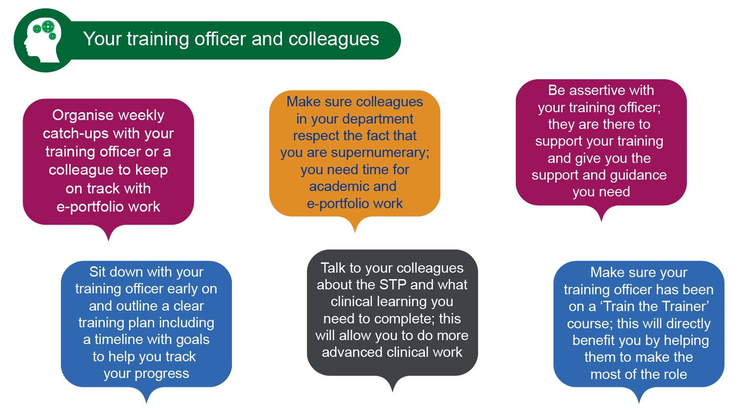Graphic showing quotes from STP trainees about their training officer and colleagues
