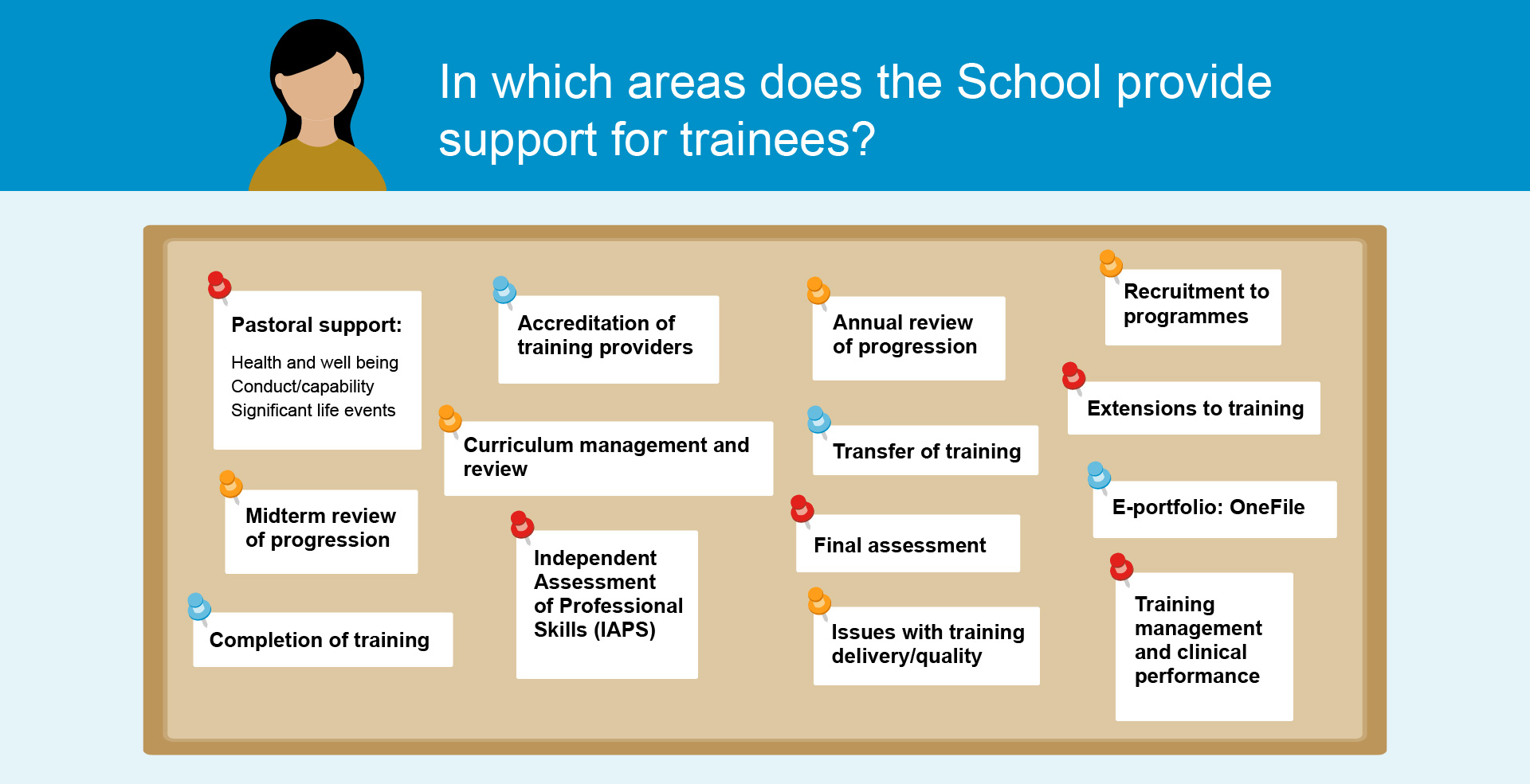 Graphic showing the areas in which the School supports trainees