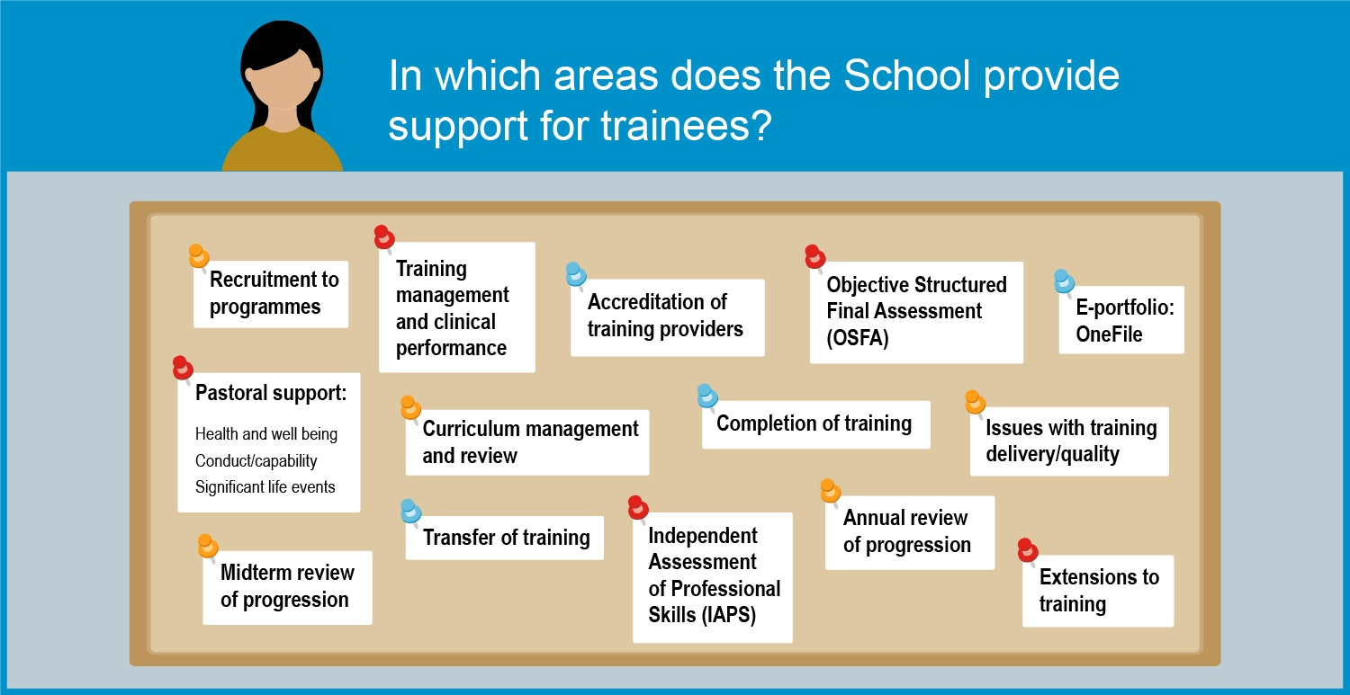 Infographic describing how the School supports trainees