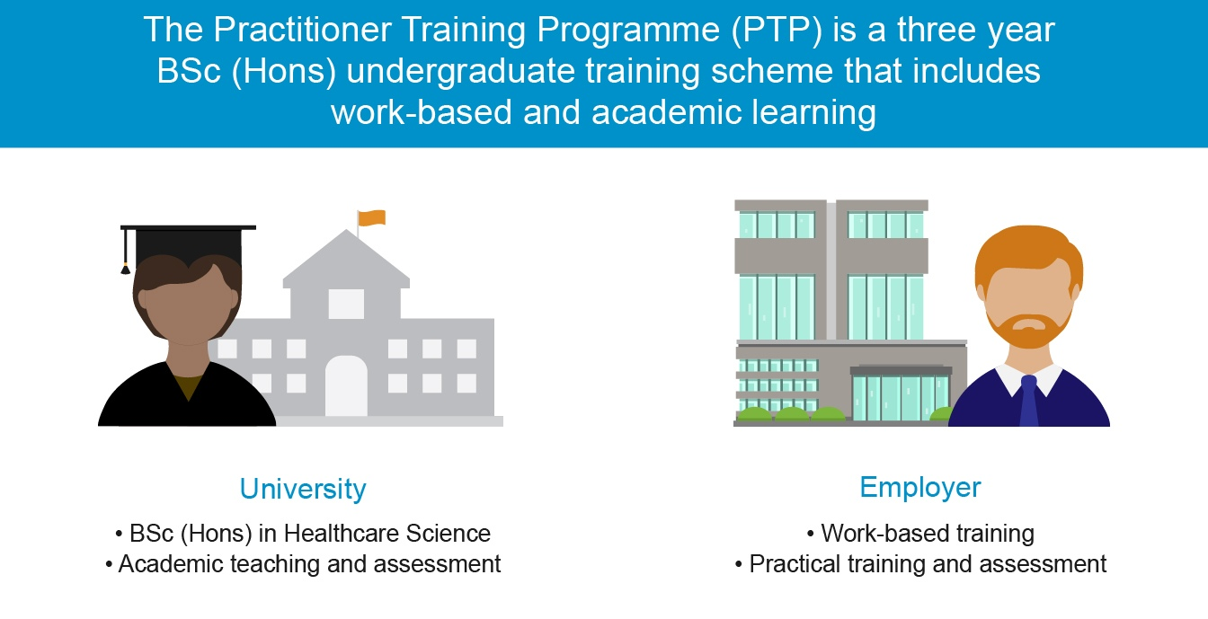 Graphic about the structure of the Practitioner Training Programme