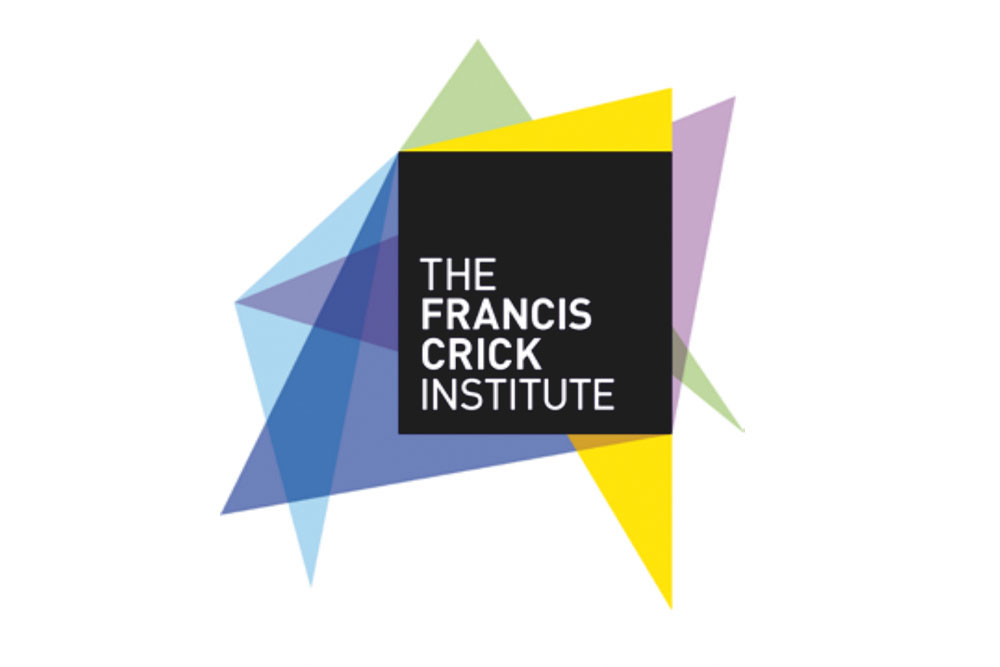 Feature image for Francis Crick Institute recruiting for clinician scientist group leaders